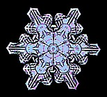 colored snowflake images